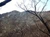 хребет Светлый – вид от Сухого лога