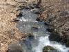 Саламандровый ручей вниз по течению